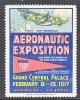 VIGNETTE  1st   PAN   AM  EXPO   1917  N.Y.     * - Air Mail