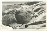 Macedonia Mountains? Old Photopostcard Travelled 1939 From Skoplje To Belgrade Bb150929 - Macedonia