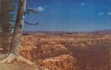 Panorama Of Bryce Canyon Nationa Park Utah