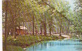 Alabama Tannehill State Park Ole Swimming Hole On Tannehill Mill Creek 1977 - Tuscaloosa