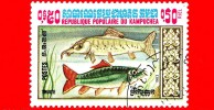 KAMPUCHEA - Cambogia - Nuovo Oblit.- 1983 - Pesci - Trota - Truite - 0.50 - Kampuchea