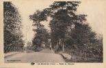 LA GUERCHE - Route De Bourges - La Guerche Sur L'Aubois