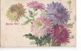 24601 Bonne Fete - Chrysanthemes Fleurs Dessin -ed AS 1654