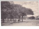 24615 Hyères 170 Les Salins Vieux La Cote D'Azur - Ed Poullan -arbres Pin - Hyeres