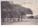 24615 Hyères 170 Les Salins Vieux La Cote D'Azur - Ed Poullan -arbres Pin