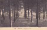 """PEPINSTER Nels """" Château De Tribomont - La Sapinière Et La Colonie  """"pas Circulée Etat Impeccable  Voir Scans - Pepinster"""