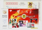 Nursing Home,Children Welfare Institute,China 2002 Hubei Computer Welfare Lottery Advert Pre-stamped Card - Computers