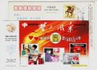 Nursing Home,Children Welfare Institute,China 2002 Hubei Computer Welfare Lottery Advert Pre-stamped Card