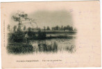 Overmeire Donck, Une Vue Du Grand Lac (pk24519) - Berlare