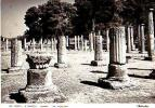 OLYMPIA     H132     The Palaestra - Griechenland