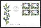 ALAND 2003 : Enveloppe 1er Jour. FDC - Aland