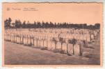 Poperinge, Poperinghe, Remy kerkhof, Lyssenthoek Cemetery (pk23903)