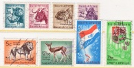 SOUTH  AFRICA    241+   (o)    ANIMALS   FLAG - South Africa (...-1961)