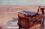 CP -  E. LESSIEUX - MONT SAINT MICHEL - LA GREVE - L. & M. - Le Mont Saint Michel