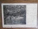 NOUVELLES CALEDONIE  RIVIERE DE LA FOA  DOS SIMPLE 1905  Petite Dechirure - Nueva Caledonia