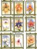Ref. 293051 * NEW *  - GRENADA GRENADINES . 1997. ORCHIDS OF THE WORLD. ORQUIDEAS DEL MUNDO - Grenada (1974-...)