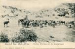 NAMIBIE - Namibie
