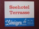 MINI HOTEL KURHAUS GASTHOF TERRASSE BONUGEN SUISSE SWITZERLAND SCHWEIZ STICKER DECAL LUGGAGE LABEL ETIQUETTE AUFKLEBER