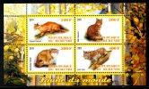 BURUNDI. Feuillet De 2011. Lynx/Chat/Caracal. - Felinos