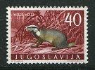 (cl. 5 - P.45) Yougoslavie ** N° 823 (ref. Michel Au Dos)  - Le Blaireau - - Unused Stamps
