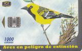 COSTA RICA - Bird, Icterus pustulatus, 10/00, used