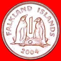 ★PENGUINS: FALKLAND ISLANDS★ 1 PENNY 2004!  LOW START★NO RESERVE!!! - Falkland Islands