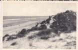 C P M-C P S M---LA PANNE--DE PANNE----mer Et Dunes---voir 2 Scans - De Panne