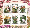 Flowers / Orchids - Congo - 2006 - M/S Of 6 - MNH - Private / Local Issue - Orchideeën