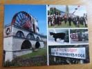 48163 POSTCARD: ISLE OF MAN: Laxey Wheel / Tynward Day; Manx Cat; DOUGLAS HORSE TRAM / Manx/English Signpost. - Ile De Man