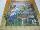 St. Kitts-Mushrooms-Butterflies - Champignons