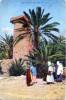 Un Bordj Dans Un Palmeraie - Algérie