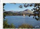 LOURDES  -   Le  Lac  De  LOurdes  Au Pied  Du  Béout -  Voiliers - Lourdes