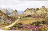 Valley Of Rocks, Lynton By A R Quinton - J Salmon 2092 Unused - Quinton, AR