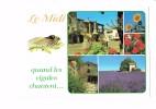 LE MIDI - Quand Les Cigales Chantent - Multivues - TOURNESOL Cigale Lavande Fontaine Coquelicot - Midi-Pyrénées