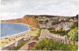 A R Quinton - Esplanade From East Cliff, Budleigh Salterton  - J Salmon No 1795- Unused - Quinton, AR