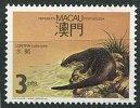 (cl. 5 - P.49) Macao ** N° 563 (ref. Michel Au Dos)  - La Loutre - - 1999-... Chinese Admnistrative Region
