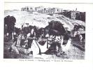 24732  PALESTINE -ISRAEL -groupe De Chameaux Kameelgruppe Camelsr -A Sfeir 40 Jerusalem -barque Pecheur -tampon Hotel