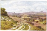 A R Quinton - Chantonbury Ring & Cissbury From Salvington Mill, Nr Worthing Colour Postcard - J Salmon No1893 - Quinton, AR