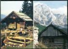 088 - Slovenia - Ojstric - Mountaineering Postmarks - Mountain - Postcard - Mountaineering, Alpinism