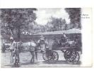 24754 EGYPTE - NATIVE OMNIBUS - N98 Lichtenstern Harari -attelage Charette