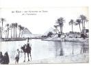 24763 EGYPTE Egypt - Le Caire Cairo - Pyramides Au Temps Inondation --ed Lichtenstern Harari N° 2