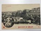 Souvenir De Royat.        L'Auvergne    1903 - Royat