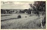 TINTIGNY -Panorama. - Tintigny