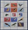 SINT MAARTEN ++ NEW NEW ++ 2013 SHEET VOGELS BIRDS OISEAUX MNH NEUF ** - Niederländische Antillen, Curaçao, Aruba