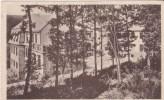 Clervaux - Clerf > Le Sanatorium Dans Le Bois Vers 1923 - Clervaux