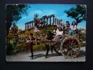 Costumi - Folklore - Costumi Siciliani - Costume Siciliano - Carretto Siciliano - Viaggiata 1959 - Costumi