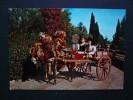 Costumi - Folklore - Costumi Siciliani - Costume Siciliano - Carretto Siciliano Bambini - Viaggiata - Costumi