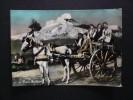 Costumi - Folklore - Costumi Siciliani - Costume Siciliano - Carretto Siciliano - Viaggiata - Costumi