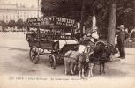 LYON - Place Bellecour - La Voiture Aux Chèvres - Lyon