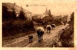 LES HAYONS Le Village - Belgique